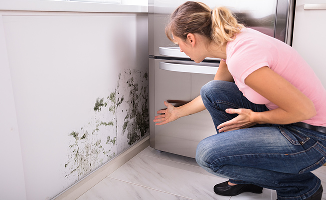 A woman noticing mold growing on the wall in her kitchen